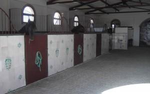 Yeguada_J_Varona_instalaciones22